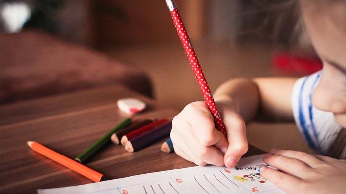 4 HP untuk Belajar Online, Murah Rp 1 Jutaan - Agustus 2020